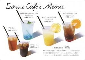dome_menu_s
